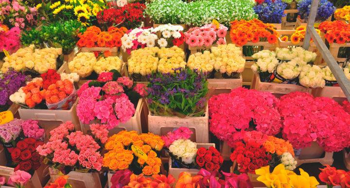 Как раскрутить цветочный магазин